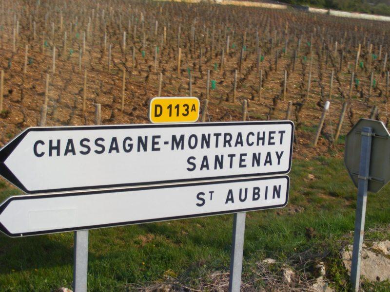 wijnreizen en wijnproeven