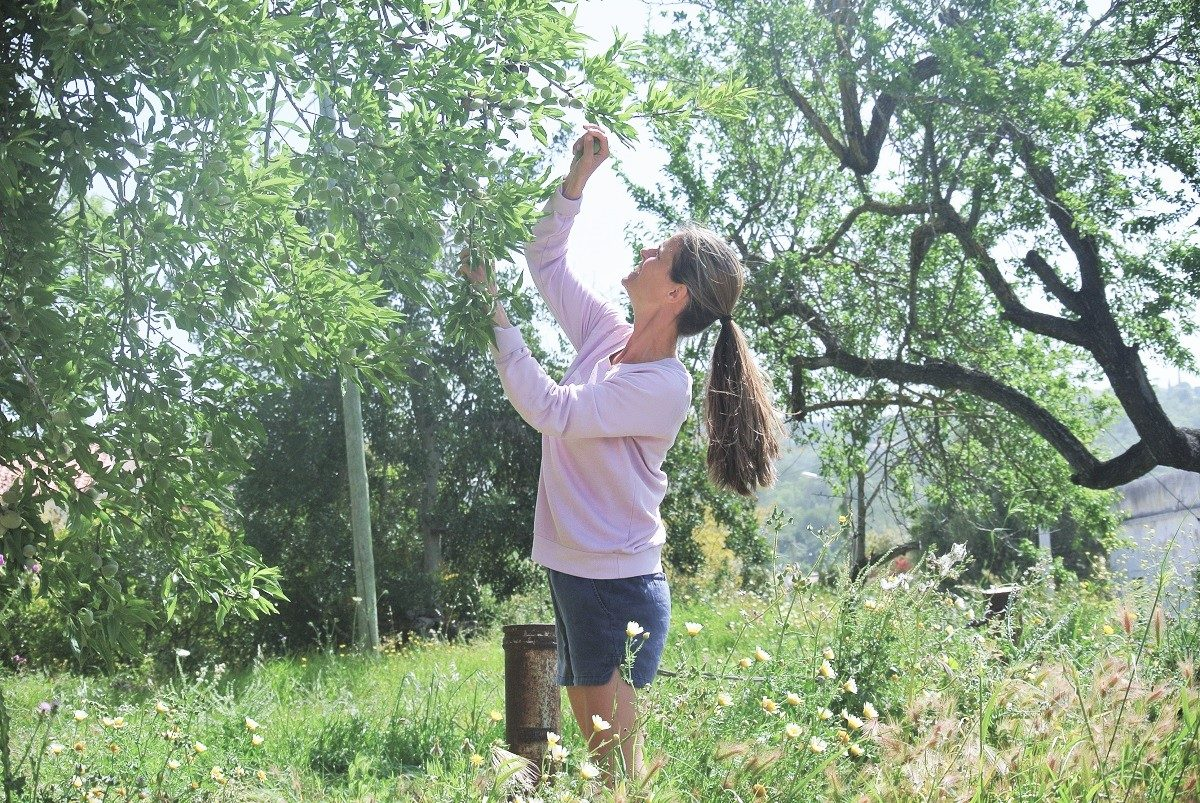 Didie in de natuur op reis