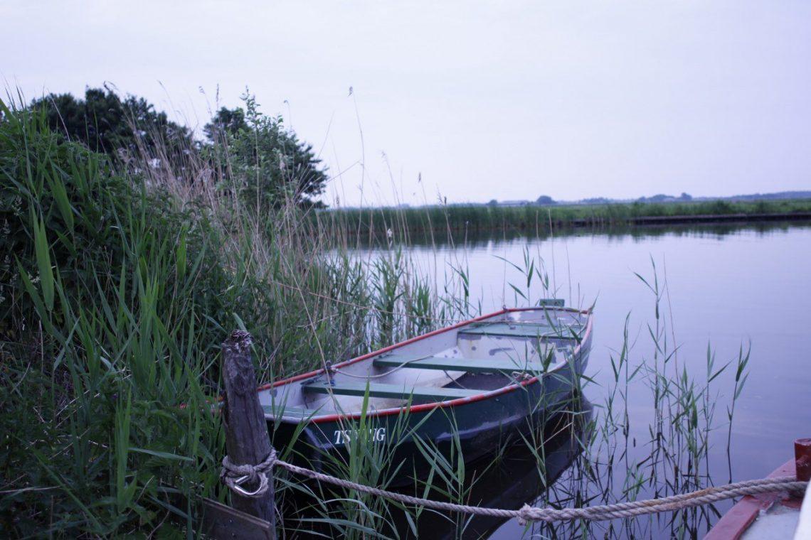 friesland natuurreis