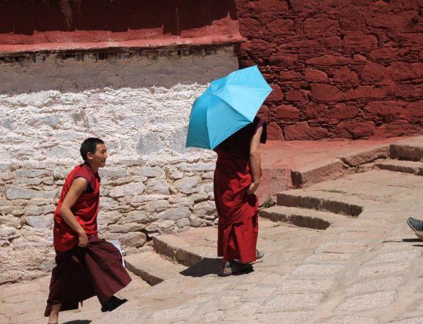 boeddhistische films en boeken